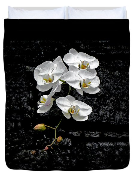 Dew-kissed Cascading Orchids Duvet Cover by Sue Melvin