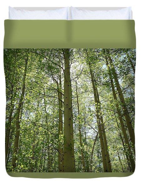 Aspen Green Duvet Cover by Eric Glaser