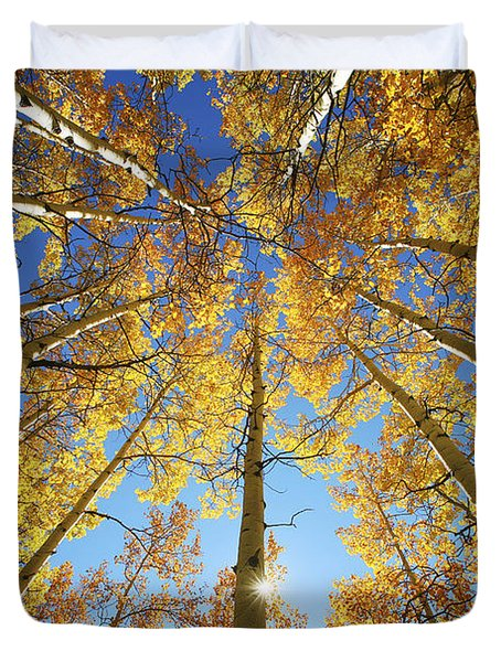Aspen Tree Canopy 2 Duvet Cover by Ron Dahlquist - Printscapes
