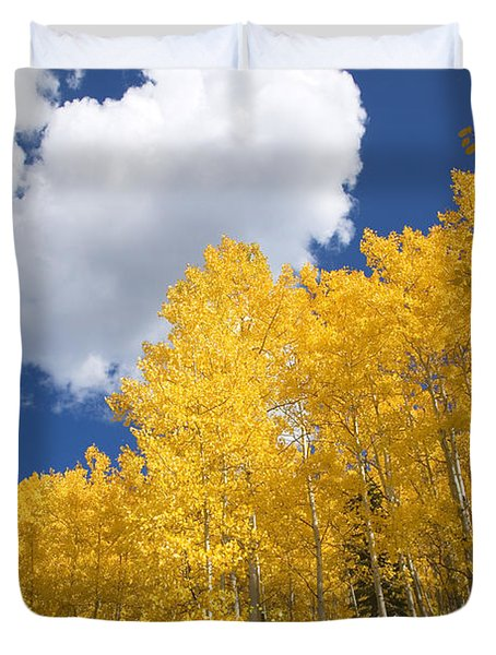Aspens And Sky Duvet Cover by Ron Dahlquist - Printscapes
