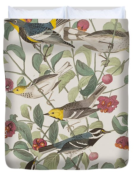 Audubons Warbler Hermit Warbler Black-throated Gray Warbler Duvet Cover by John James Audubon