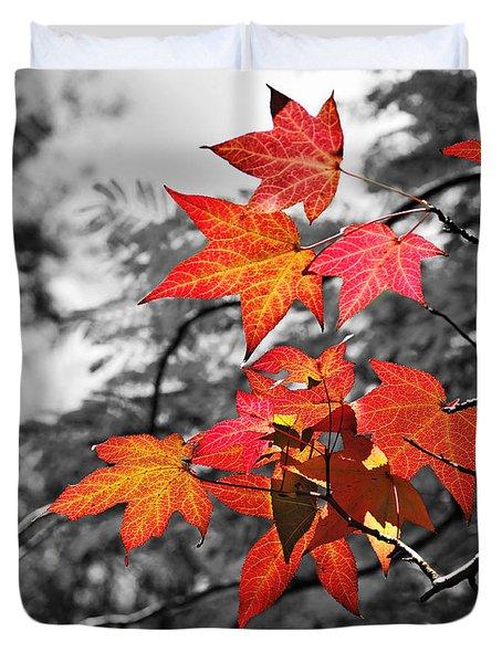 Autumn On Black And White Duvet Cover by Kaye Menner