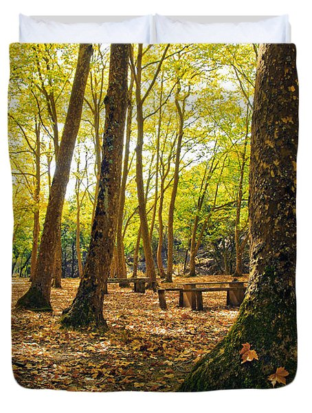 Autumn Scenery Duvet Cover by Carlos Caetano