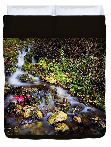 Autumn Stream Duvet Cover by Chad Dutson