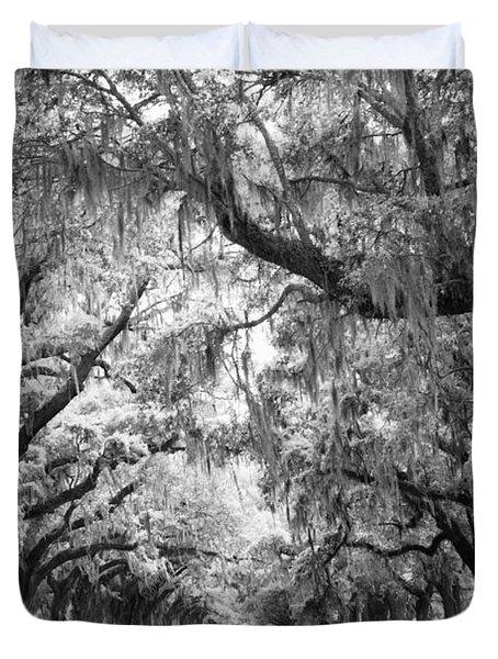 Avenue Of Oaks Charleston South Carolina Duvet Cover by Stephanie McDowell