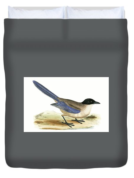 Azure Winged Magpie Duvet Cover by English School