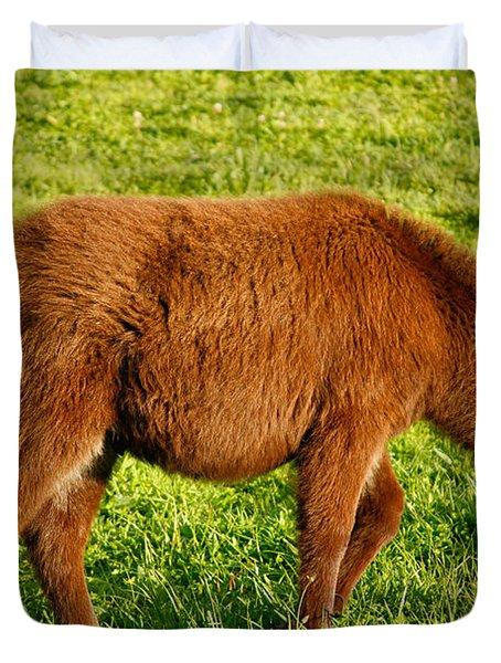 Baby Donkey Duvet Cover by Gaspar Avila