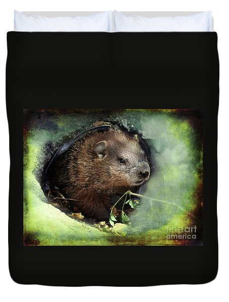 Baby Groundhog Duvet Cover by Elaine Manley