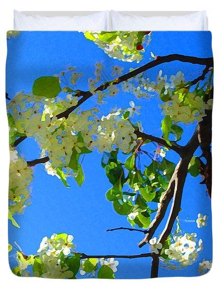 Backlit White Tree Blossoms Duvet Cover by Amy Vangsgard