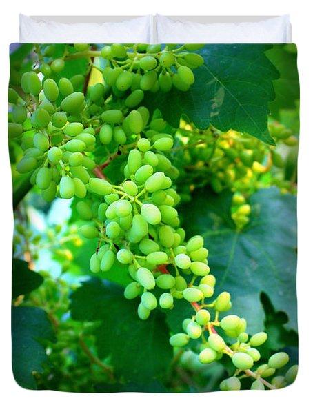 Backyard Garden Series - Young Grapes Duvet Cover by Carol Groenen