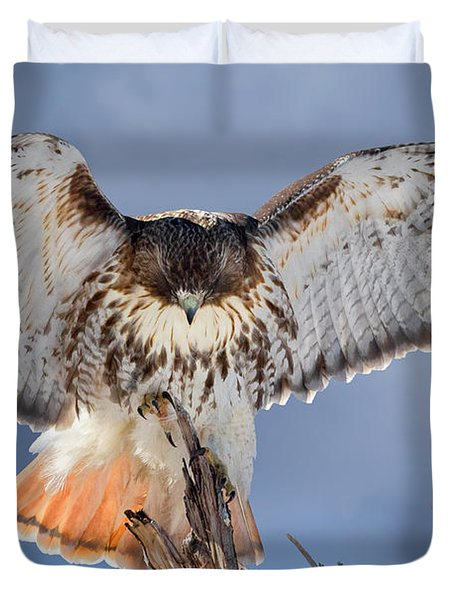 Balance Duvet Cover by Bill Wakeley