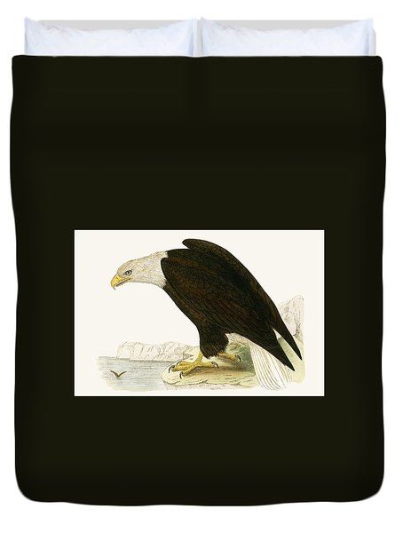 Bald Eagle Duvet Cover by English School