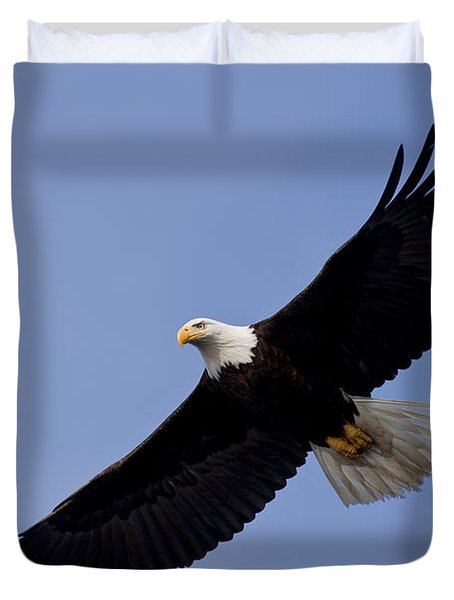 Bald Eagle in flight Duvet Cover by John Hyde - Printscapes