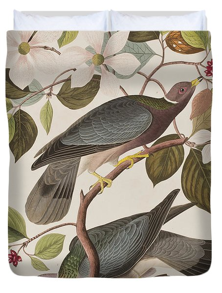 Band-tailed Pigeon  Duvet Cover by John James Audubon