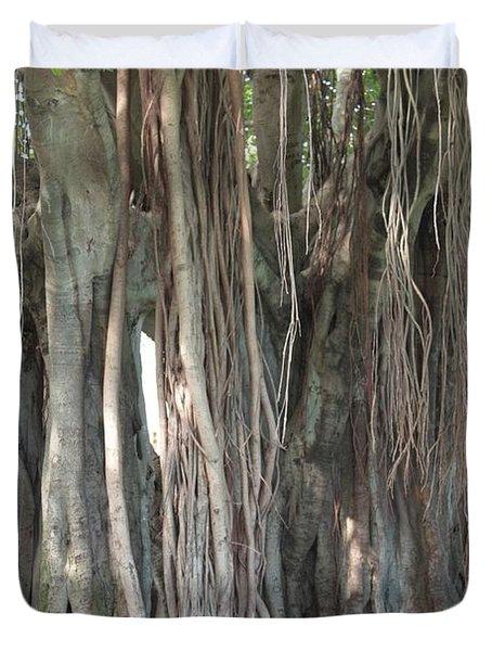 Banyan Tree Duvet Cover by Carol Groenen