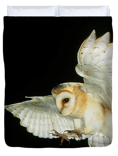 Barn Owl Duvet Cover by Andy Harmer and SPL and Photo Researchers