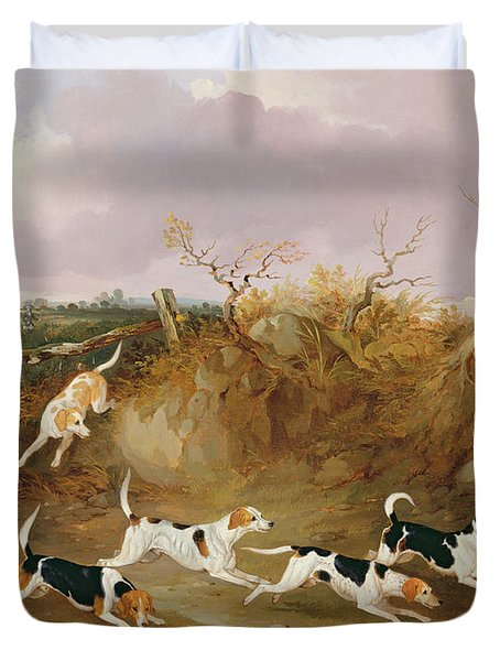 Beagles In Full Cry Duvet Cover by John Dalby