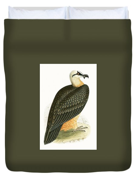 Bearded Vulture Duvet Cover by English School