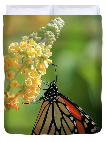 Beautiful Butterfly Duvet Cover by Karol Livote