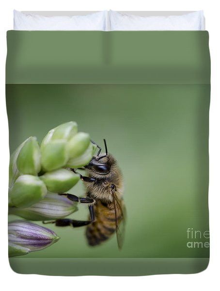 Busy Bee Duvet Cover by Andrea Silies