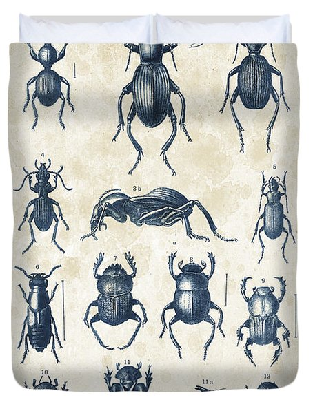 Beetles - 1897 - 01 Duvet Cover by Aged Pixel