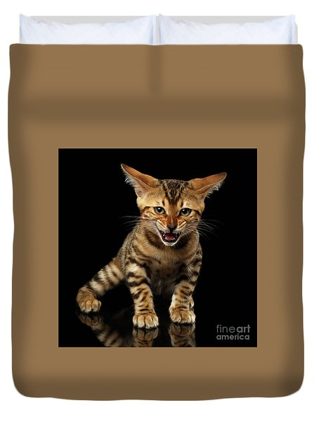Bengal Kitty Stands And Hissing On Black Duvet Cover by Sergey Taran