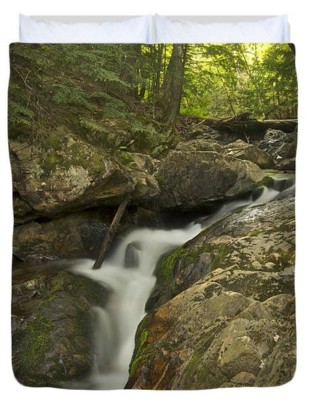 Big Pup Falls 4 Duvet Cover by Michael Peychich