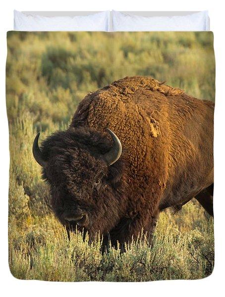 Bison Duvet Cover by Sebastian Musial