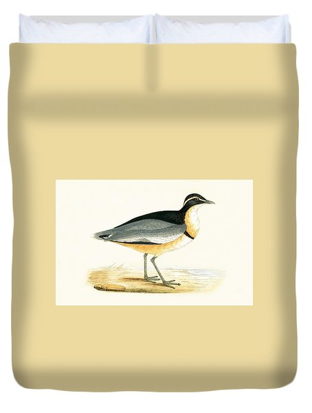 Black Headed Plover Duvet Cover by English School