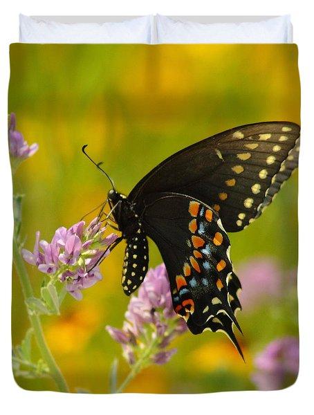 Black Swallowtail Duvet Cover by Robert Frederick
