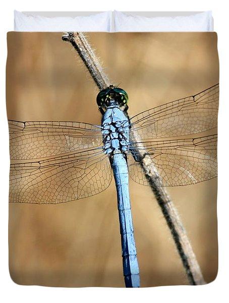 Blue Beauty Duvet Cover by Carol Groenen