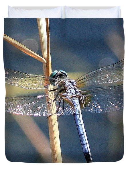 Blue Dragonfly Duvet Cover by Carol Groenen