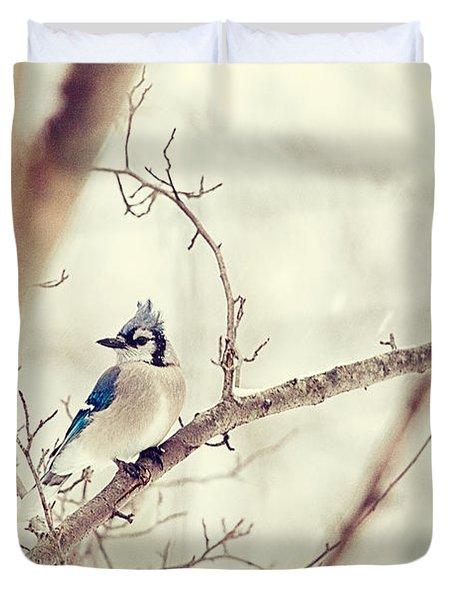 Blue Jay Winter Duvet Cover by Karol Livote