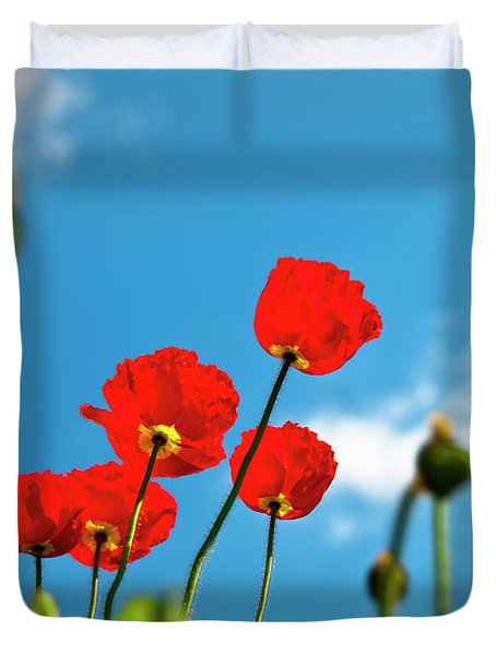Blue Sky And Poppies Duvet Cover by Tamyra Ayles