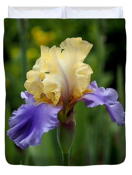 Blue Yellow Iris Germanica Duvet Cover by Rona Black