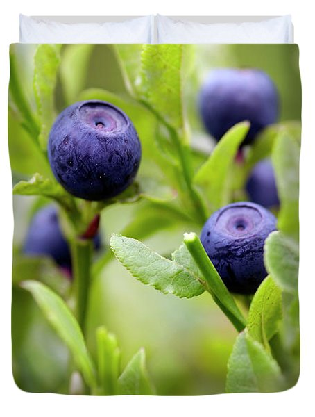 Blueberry Shrubs Duvet Cover by Michal Boubin