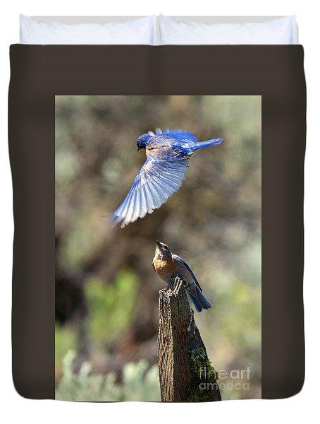 Bluebird Buzz Duvet Cover by Mike Dawson
