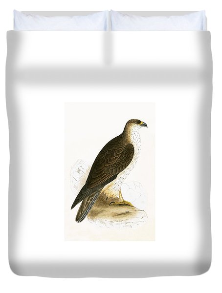 Bonelli's Eagle Duvet Cover by English School