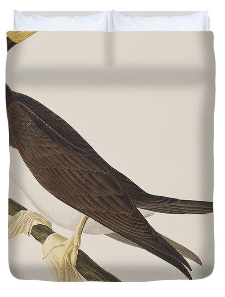 Booby Gannet   Duvet Cover by John James Audubon