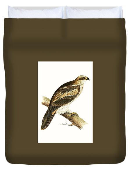 Booted Eagle Duvet Cover by English School