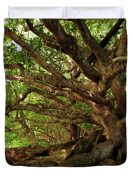 Branches And Roots Duvet Cover by James Eddy