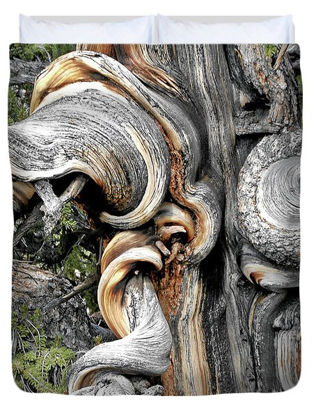 Bristlecone Pine - 'I am not part of history - history is part of me' Duvet Cover by Christine Till
