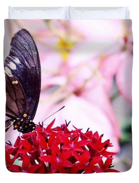 Black Butterfly On Red Flower Duvet Cover by Sandy Taylor