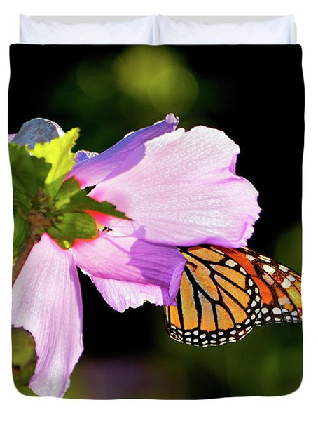 Butterfly Sunset Duvet Cover by Betty LaRue