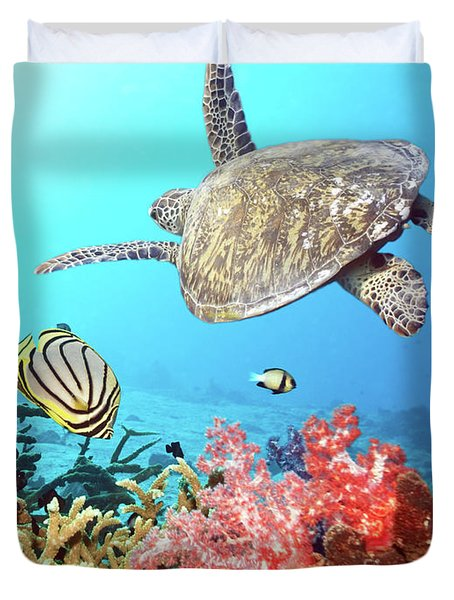 Butterflyfishes and turtle Duvet Cover by MotHaiBaPhoto Prints
