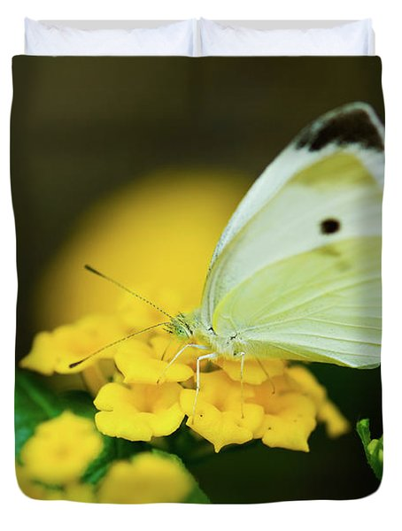 Cabbage White Butterfly Duvet Cover by Betty LaRue