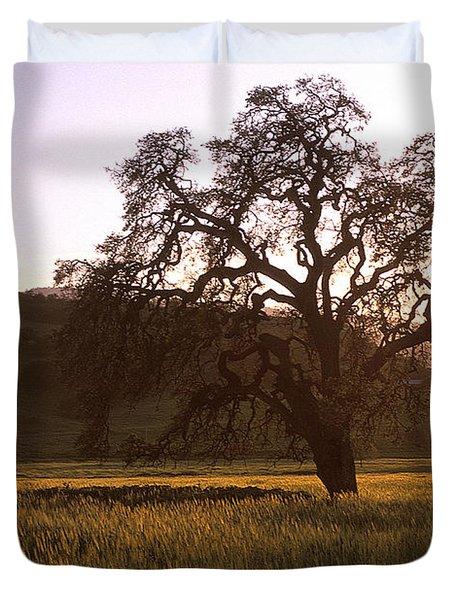 California Hwy 25 Oak Duvet Cover by Kathy Yates