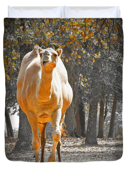 Camel Duvet Cover by Douglas Barnard