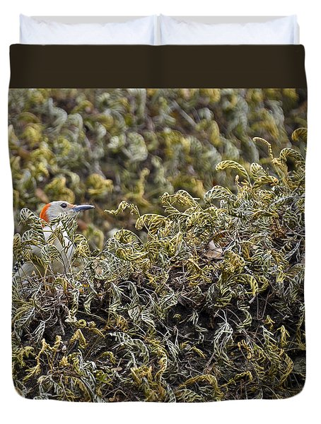 Camouflaged Red-bellied Woodpecker Duvet Cover by Carolyn Marshall