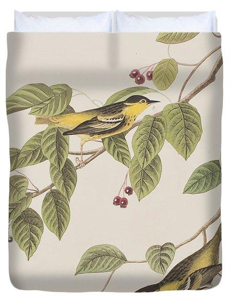 Carbonated Warbler Duvet Cover by John James Audubon